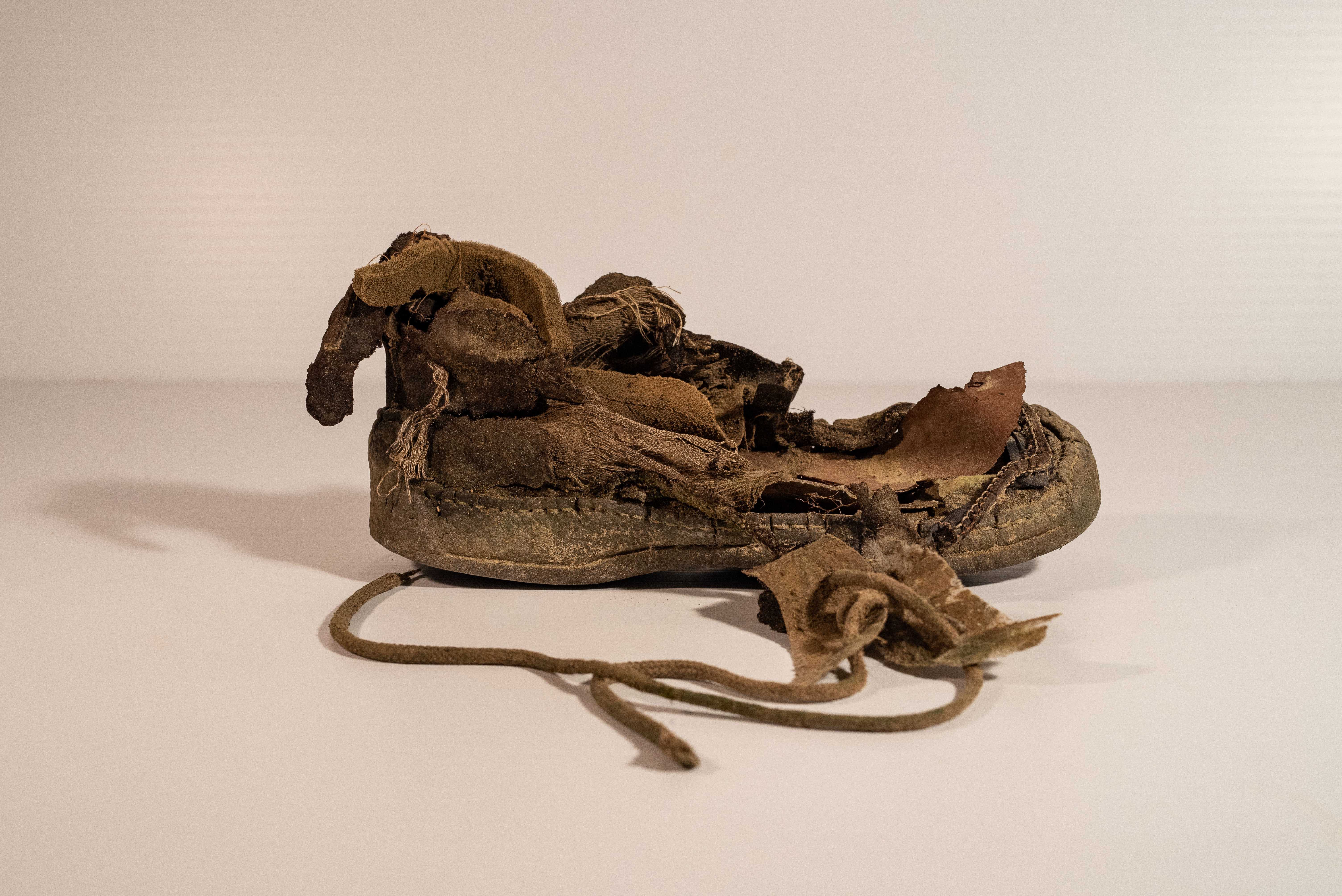 A rarely found Ripani Shoe from an unknown era